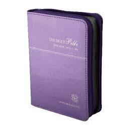 現代英文輕便型拉鍊彩圖-紫色