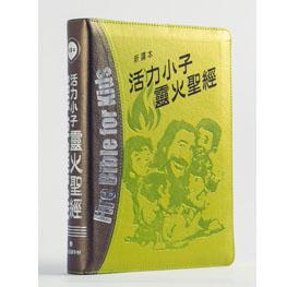 綠銀皮拉拇活力小子靈火聖經--新譯本