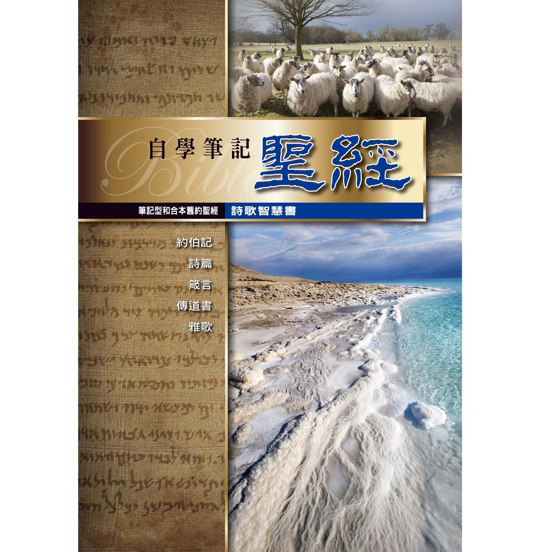 筆記聖經(詩歌智慧書)