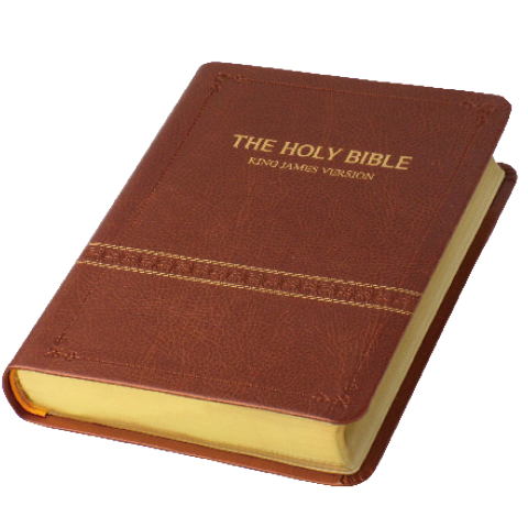 KJV HOLY BIBLE (紅字.輕便型.彩皮.古銅色.金邊)