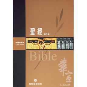 【絕版】彩圖典藏本聖經(精裝姆指索引)